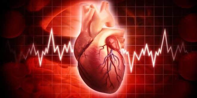چاپ 3 بعدی عضله قلب در حال تپیدن امکانپذیر شد