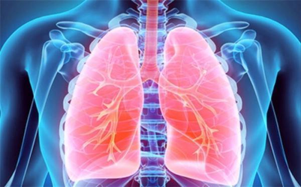 کدام مواد غذایی برای تقویت ریه و سیستم ایمنی بدن مفید هستند؟