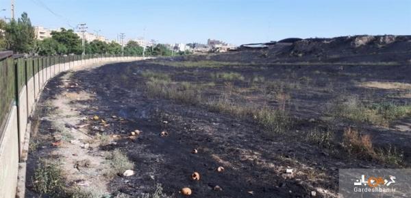 آتش سوزی آسیبی به محوطه تاریخی تپه هگمتانه وارد نکرده است