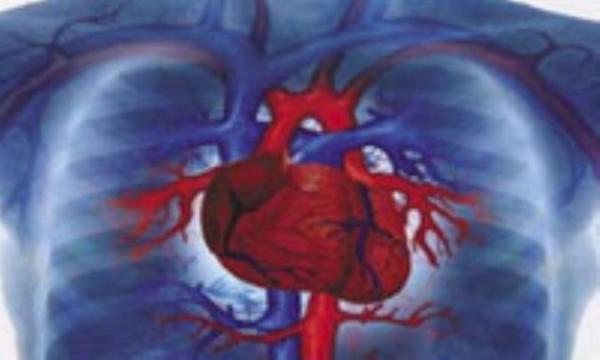 بیماری های قلبی و داروهای ضد گلیسمی